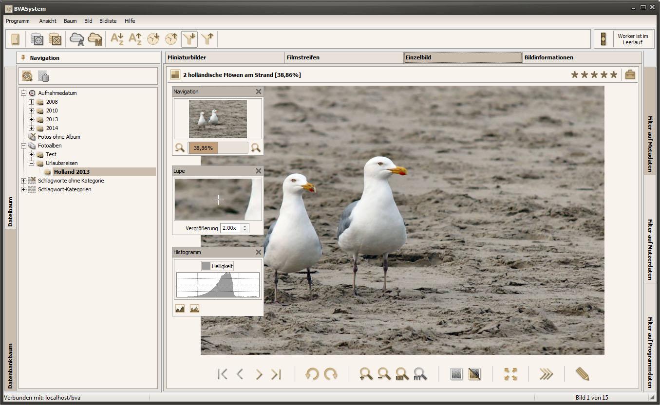 BVASystem 2.2.1 - Einzelbildansicht