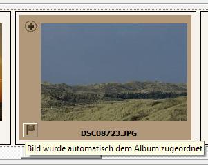 Bild wurde automatisch dem Album zugeordnet